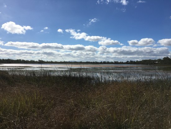 Mareeba Tropical Savannah and Wetland Reserve: photo2.jpg