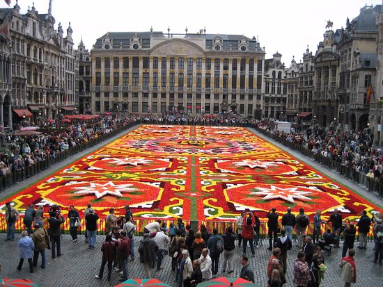 tapis de fleurs sur la grand place de bruxelles photo de grand place bruxelles tripadvisor. Black Bedroom Furniture Sets. Home Design Ideas