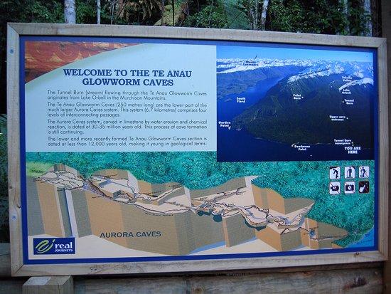 Te Anau Glowworm Caves : 蒂阿瑙螢火蟲洞