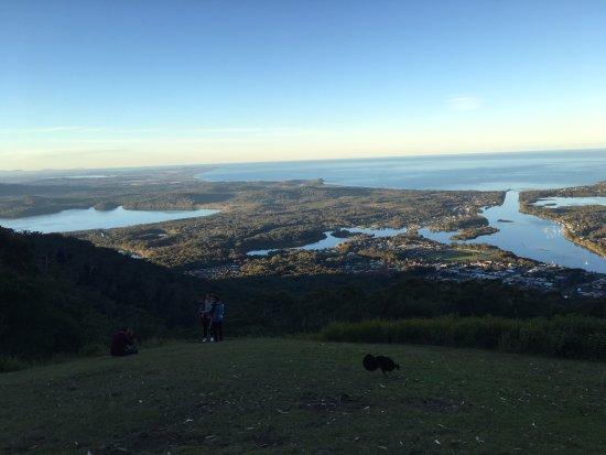 Laurieton, Австралия: Panorama