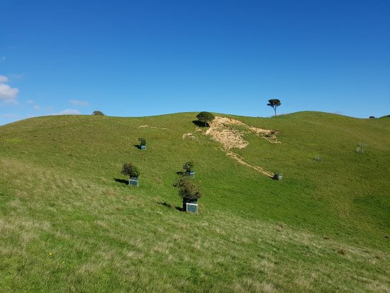 Howick, New Zealand: Duder park