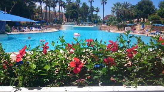 Hotel Apartamentos Princesa Playa: The pool area from the snack bar