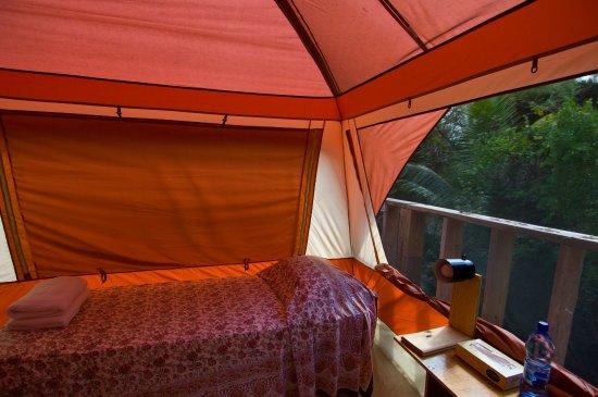 Sivananda Ashram Yoga Retreat : Tent Hut