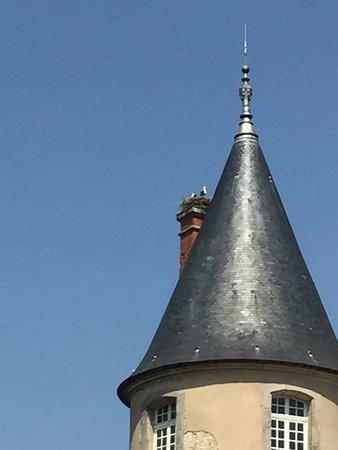 Craon, France : Cicogne sulla torre del castello