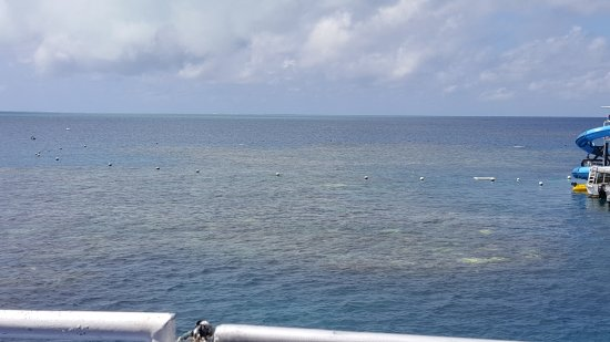 Cairns Region, Australia: 20170708_123307_large.jpg