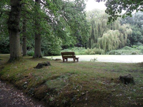 Varengeville-sur-Mer, Francia: The West Garden.....