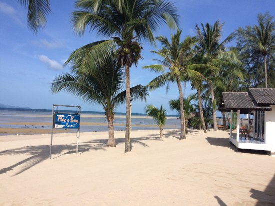 Mac's Bay Resort: photo1.jpg