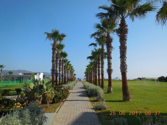 Hotel Delfina Beach: verso la spiaggia