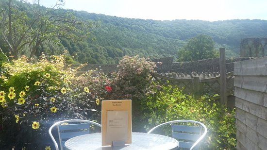 View from White Monk Garden over Tintern Abbey