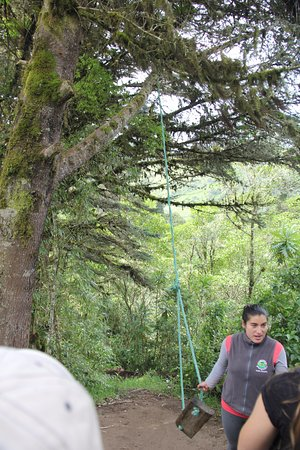 Yunguilla, الإكوادور: Inviting swing offers exhilarating ride