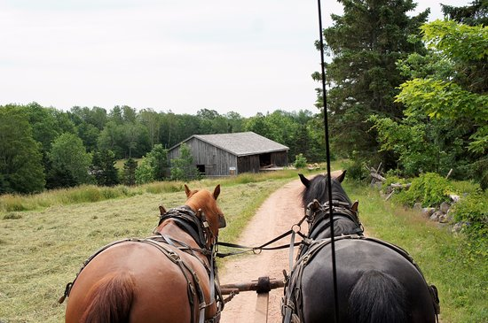 New Ross, Canada: view from covered wagon ride
