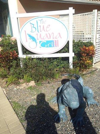 The Blue Iguana Grill: photo1.jpg