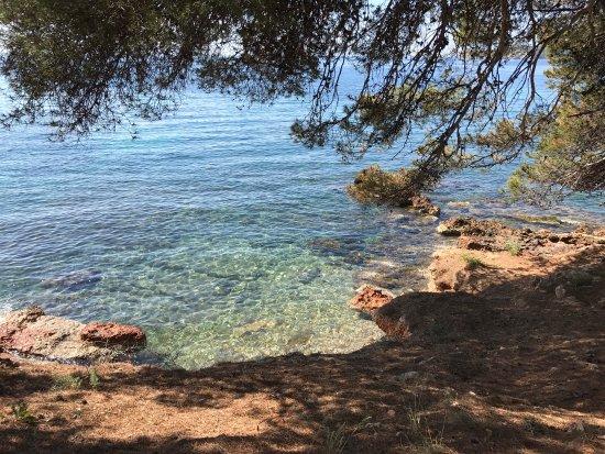 Costa d'en Blanes, España: photo9.jpg