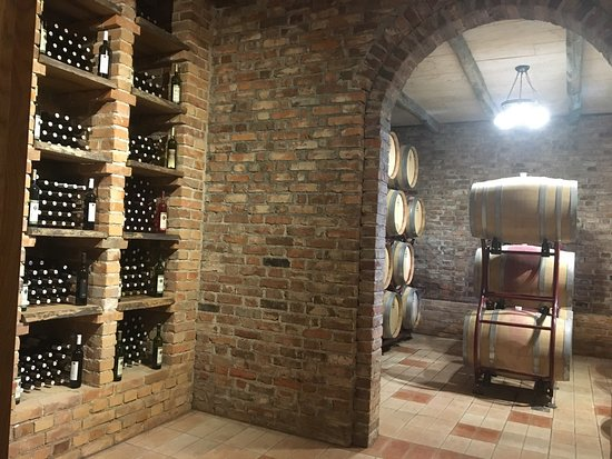 Vinska kuća Pavlomir