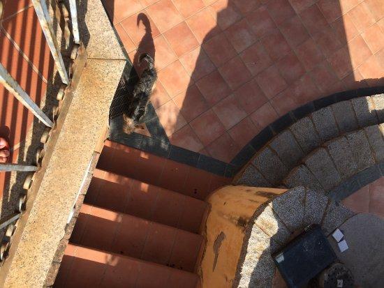 Girasole, Italien: photo4.jpg