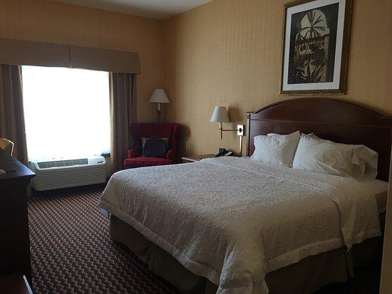 Hampton Inn & Suites Sacramento-Cal Expo: photo1.jpg