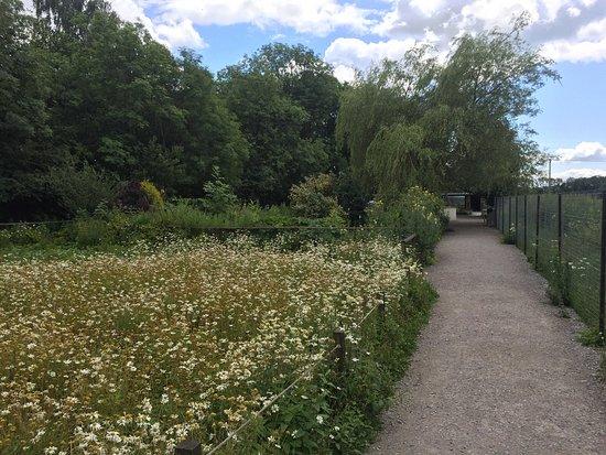 Milnthorpe, UK: photo3.jpg