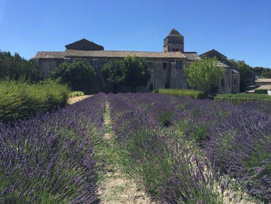Saint-Paul de Mausole : photo2.jpg