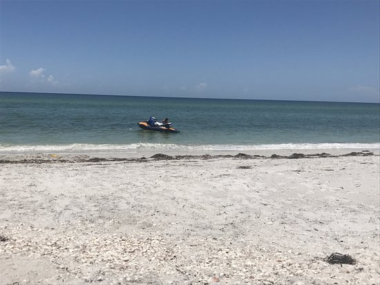 Little Gasparilla Island, FL: July 4th