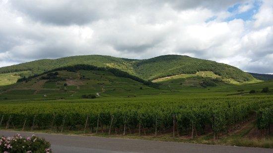 Kientzheim Photo