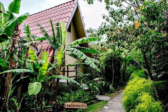 Pura Vida Retreat & Spa: Aframe Exterior