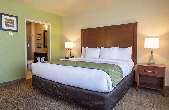 西蒙斯套房酒店照片
