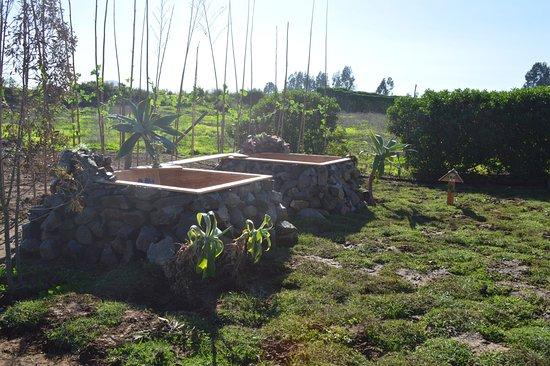 Coquimbo, Chile: Tinas de agua caliente con hierbas y sales
