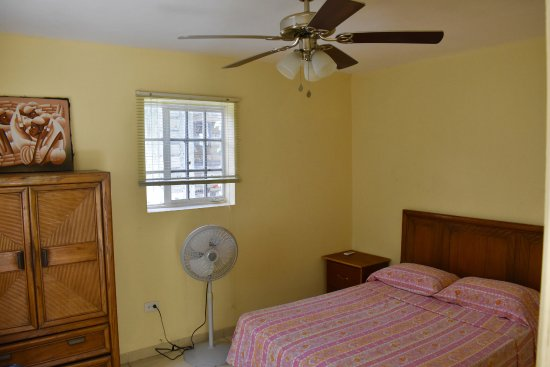 Eucalyptus Guest House: This is an example of one of our single bed rooms