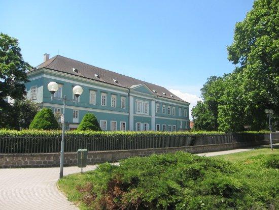 Chateau Dacice