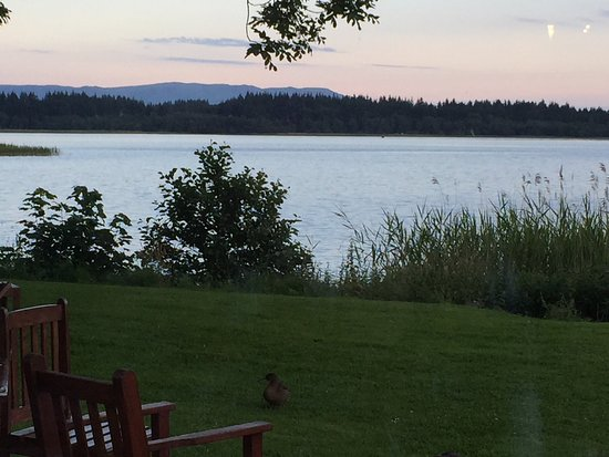 The Lake of Menteith Hotel: photo0.jpg