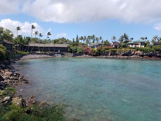 Honokeana Bay: Heaven on Earth!