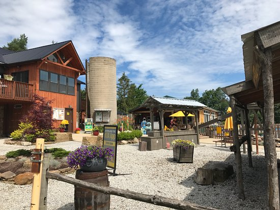 Thompson grand river valley koa updated 2018 - Campgrounds in ohio with swimming pools ...