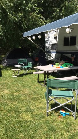 Pine Near RV Park & Campground: photo0.jpg