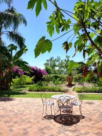 Jardin botanique et exotique val rahmeh menton france for Jardin 93