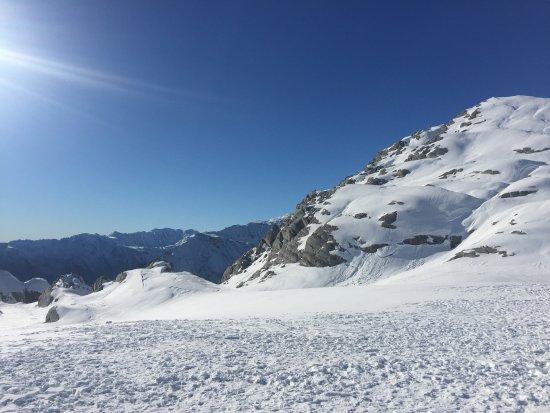 Fox Glacier-billede