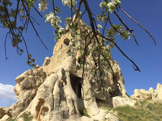 Cappadocia Castle Cave Hotel : photo4.jpg