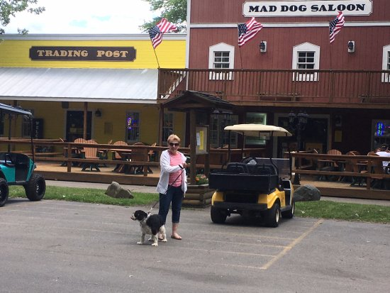 Port Huron KOA: Pet Friendly, Golf Cart Rental, And The Mad Dog Saloon
