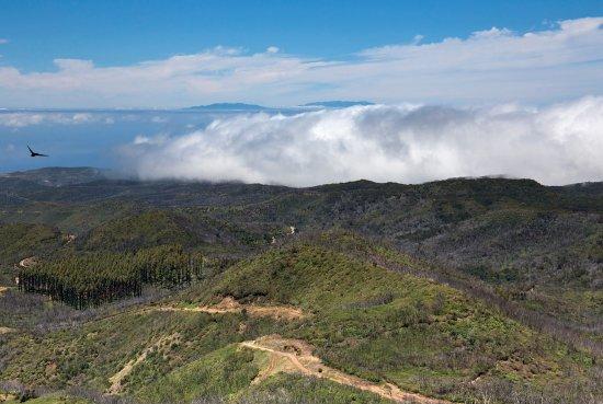 Alto de Garojonay: Заоблачная Ла Пальма