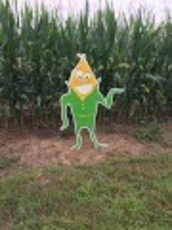 Popcorn Labyrinthe