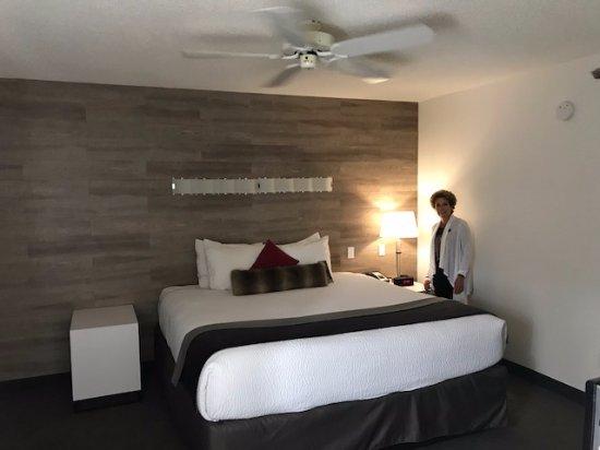 Elk + Avenue Hotel: King bed, spacious room