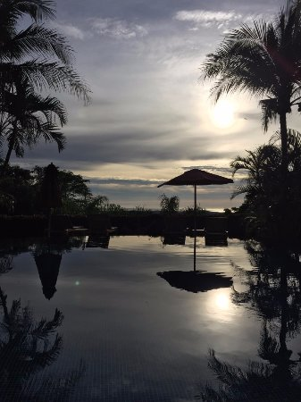 Los Altos de Eros : Infinity pool overlooking the jungle