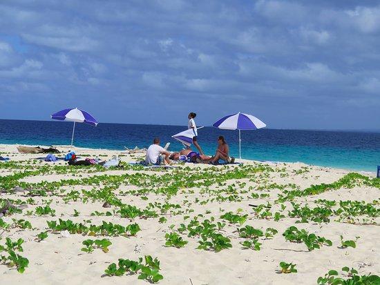 Остров Тоберуа, Фиджи: Picnic island day trip