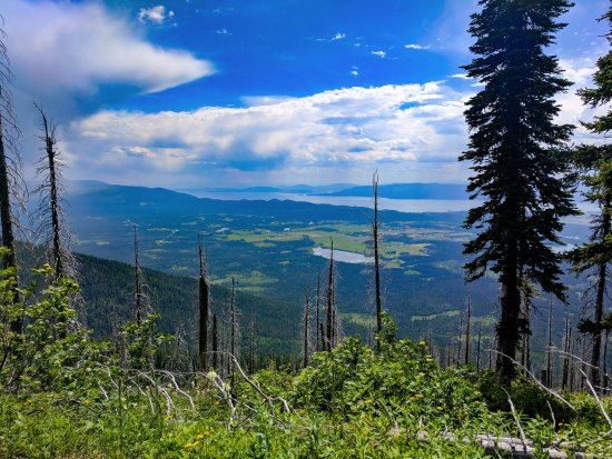 Bigfork, MT: View along 717 trail up to Mt. Aeneas