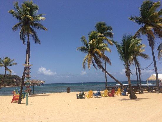 St. Thomas Diving Club: Bolongo Bay