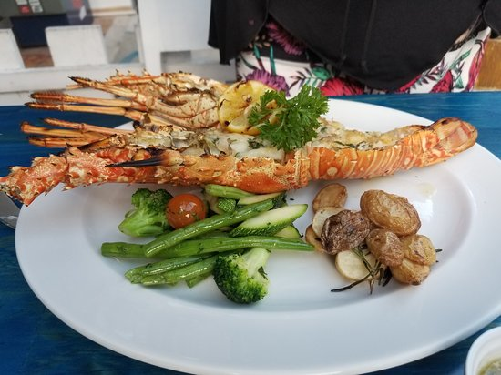 El Muelle Restaurant : Excellent lobster and octopus.