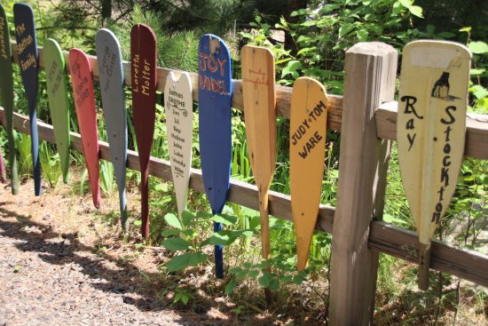 Ely, MN: Bring an old Paddle and for a few $$$'s you can add it to the collection on display