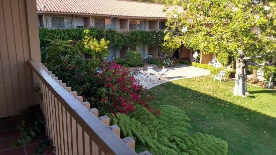 Best Western Plus Pepper Tree Inn: vista al jardin