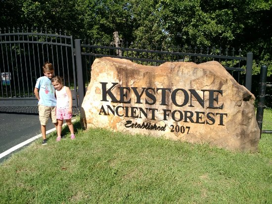 Keystone Ancient Forest : Disappointed Grandchildren to find out Park is closed