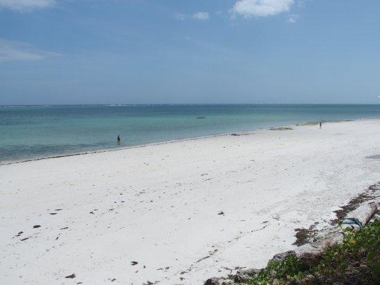 Nyali Beach: 海灘/海洋