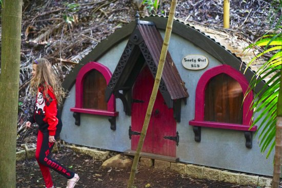Tamborine Mountain, Australia: One of the kids walk Sooty Owl house